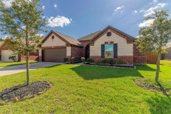 Photo of 13938 Ginger Rose Court, Pearland, TX 77584 (MLS # 27455118)