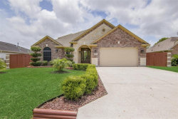 Photo of 222 S Holmes Street, La Porte, TX 77571 (MLS # 30847546)