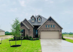 Photo of 9032 Bowie Trail, Needville, TX 77461 (MLS # 31297177)