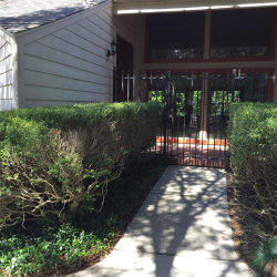 Photo of 625 Rancho Bauer Drive, Houston, TX 77079 (MLS # 31637944)