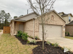 Tiny photo for 13221 Dancing Reed Drive, Texas City, TX 77510 (MLS # 33733259)
