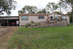 Photo of 2900 Country Road 471, Brazoria, TX 77422 (MLS # 34775067)