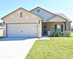 Photo of 227 Forest Park Drive, West Columbia, TX 77486 (MLS # 37258828)