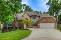 Photo of 6 Drewdale Court, The Woodlands, TX 77382 (MLS # 37397295)