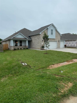 Photo of 9123 Anna Street, Needville, TX 77461 (MLS # 38283731)