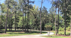 Tiny photo for 2327 Strong Horse, Conroe, TX 77301 (MLS # 38511540)