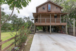 Photo of 1321 County Road 244a, Brazoria, TX 77422 (MLS # 39614589)