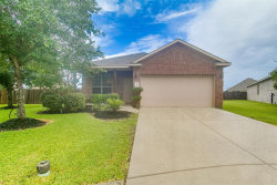 Photo of 3228 Emma Lake Court, League City, TX 77539 (MLS # 41136358)
