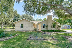 Photo of 13905 Padon Road, Needville, TX 77461 (MLS # 41183402)