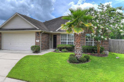 Photo of 23603 Mesquite Trail Lane, Spring, TX 77373 (MLS # 43018724)