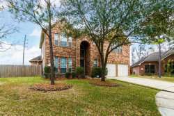 Photo of 1523 Rocky Bar Lane, Richmond, TX 77469 (MLS # 45950994)