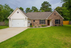 Photo of 10549 Fawn Mist Court, Conroe, TX 77303 (MLS # 48592506)