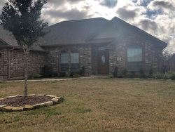 Photo of 203 Poppy Street, Lake Jackson, TX 77566 (MLS # 48704235)