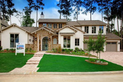 Photo of 17 Honey Daffodil Place, The Woodlands, TX 77380 (MLS # 48843617)