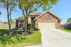 Photo of 13201 Misty Shore Lane, Pearland, TX 77584 (MLS # 50181628)