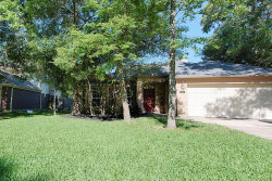 Photo of 42 E Trillium Circle, The Woodlands, TX 77381 (MLS # 51723285)