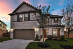 Photo of 14112 Wedgewood Lakes Court, Pearland, TX 77584 (MLS # 53422519)
