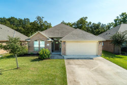 Photo of 113 Blue Jay Court, Richwood, TX 77566 (MLS # 53651962)