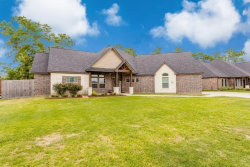 Photo of 409 Williamsburg Avenue, Clute, TX 77531 (MLS # 53693377)
