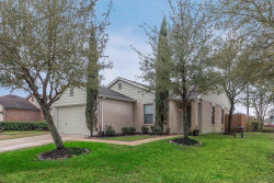 Photo of 14002 Autumn Ridge Trail Drive, Houston, TX 77048 (MLS # 57416930)
