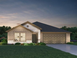 Photo of 6026 Mapleton Meadow Lane, Richmond, TX 77407 (MLS # 59167296)