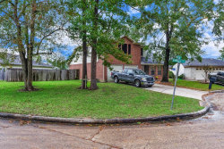 Photo of 310 Keelson Court, Crosby, TX 77532 (MLS # 59546246)