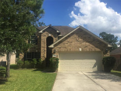 Photo of 166 E Spindle Tree Circle, The Woodlands, TX 77382 (MLS # 61584591)