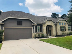 Photo of 11215 Misty Willow Lane, Tomball, TX 77375 (MLS # 61827759)