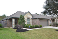 Photo of 12527 Bridle Springs Lane, Houston, TX 77044 (MLS # 61843807)