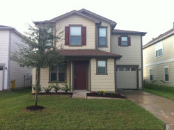 Photo of 2623 Skyview Ridge Court, Houston, TX 77047 (MLS # 6243958)