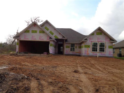 Photo of 313 Yorktown Avenue, Clute, TX 77531 (MLS # 63395728)