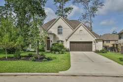Photo of 19 Tannery Hill Road, The Woodlands, TX 77375 (MLS # 64725751)