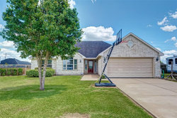 Photo of 11011 April Drive, Needville, TX 77461 (MLS # 68087471)