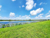 Photo of 2004 Twin Lakes, West Columbia, TX 77486 (MLS # 68985816)