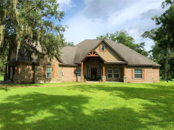 Photo of 4181 County Road 461a, Brazoria, TX 77422 (MLS # 69572259)