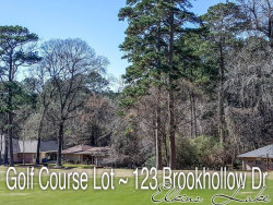 Photo of 123 Brookhollow Drive, Huntsville, TX 77340 (MLS # 70277301)