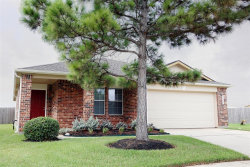 Photo of 21747 Stoney Bluff Lane, Katy, TX 77449 (MLS # 70764663)