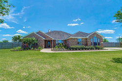 Photo of 11103 Audrey Drive, Needville, TX 77461 (MLS # 71174180)