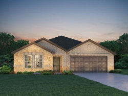 Photo of 3003 Stephen Howard Court, Missouri City, TX 77459 (MLS # 73319561)