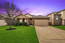 Photo of 23643 San Servero Drive, Katy, TX 77493 (MLS # 75062038)