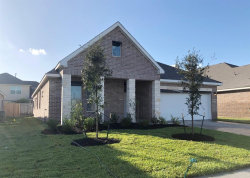 Photo of 13703 Alaskan Brown Bear Trail, Crosby, TX 77532 (MLS # 75529643)
