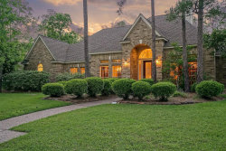 Photo of 18 Ash Branch Court, The Woodlands, TX 77381 (MLS # 77694938)