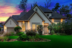 Photo of 10 N Fremont Ridge Loop, The Woodlands, TX 77389 (MLS # 80357301)