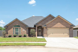 Photo of 118 Blue Jay Court, Richwood, TX 77566 (MLS # 83279800)