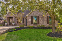 Photo of 31 Wyndemere Drive, Montgomery, TX 77356 (MLS # 84367498)