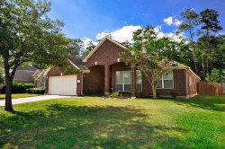 Photo of 9138 Running Eagle Falls, Tomball, TX 77375 (MLS # 85778048)