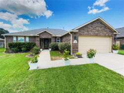 Photo of 248 Mossy Meadow Drive, West Columbia, TX 77486 (MLS # 87526489)