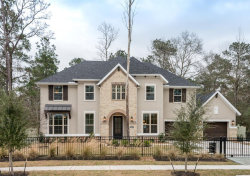 Photo of 10565 Lake Palmetto Drive, Conroe, TX 77385 (MLS # 88417272)