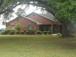 Photo of 413 N Jay Street, Boling, TX 77420 (MLS # 89295646)