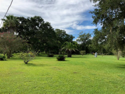 Photo of 5427 County Road 819, Brazoria, TX 77422 (MLS # 93092770)